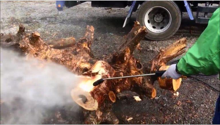 木材の皮剥ぎと洗浄(2)