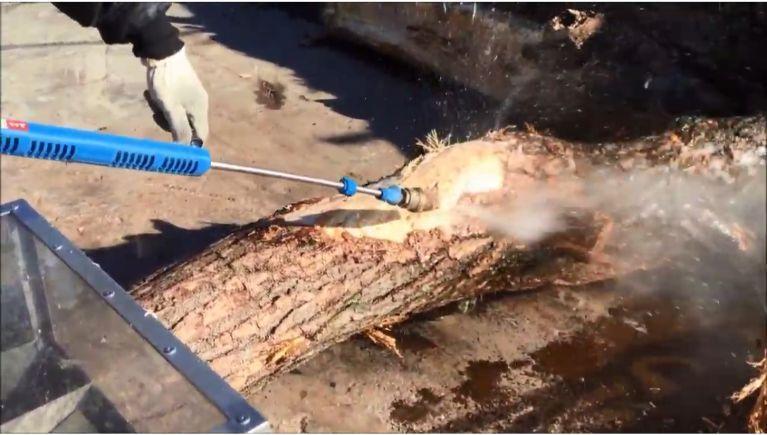 ブナ科の木材の皮剥ぎ作業